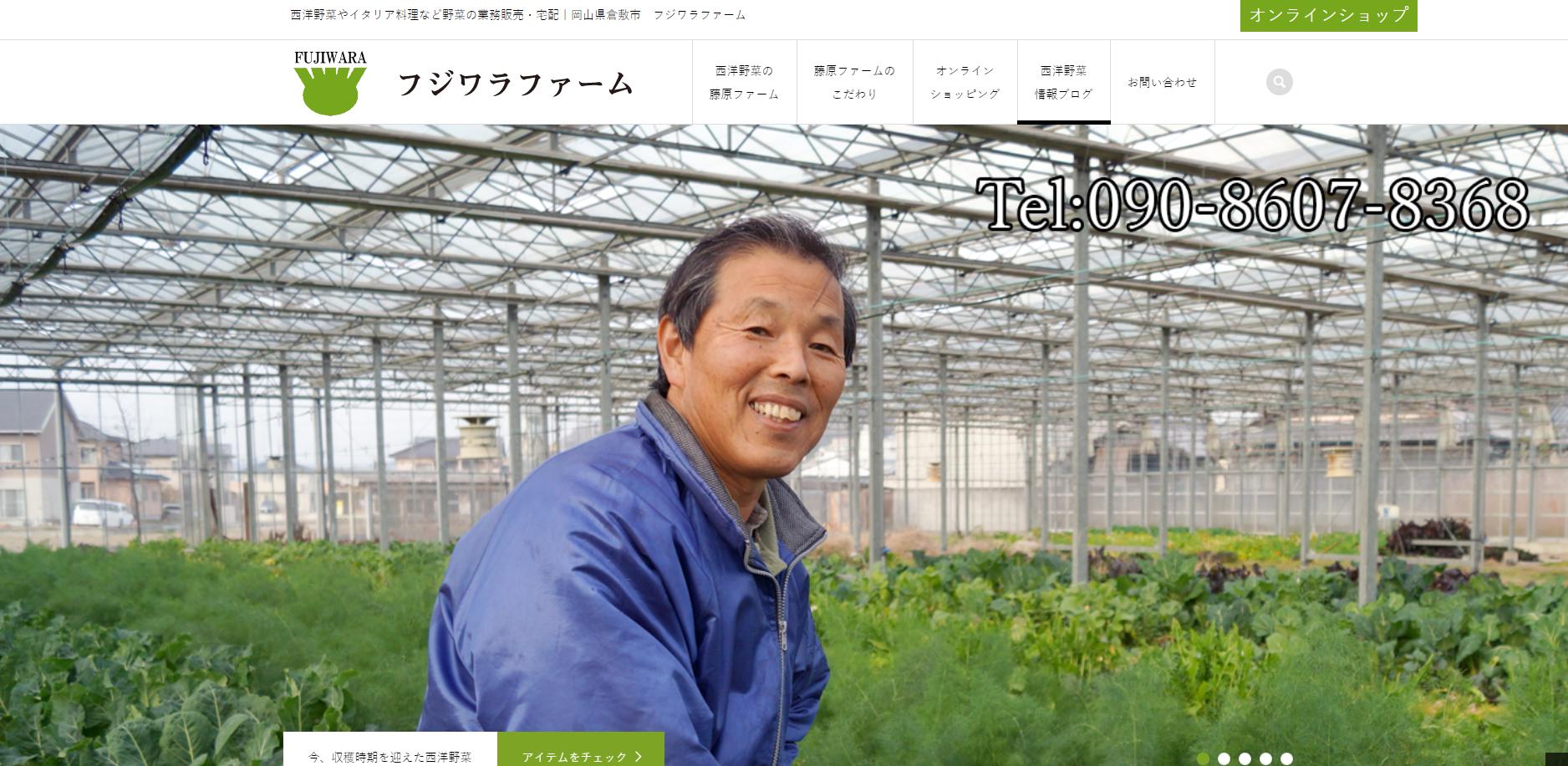 岡山県西洋野菜のフジワラファーム